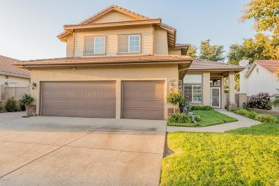 Simi Valley Single Family Home For Sale: 3831 Santa Lucia Street