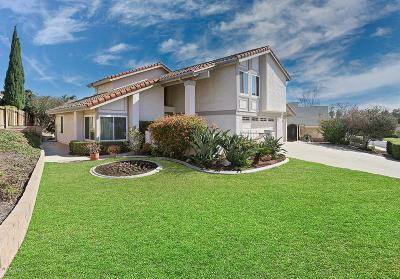 Thousand Oaks Single Family Home For Sale: 301 Odebolt Drive