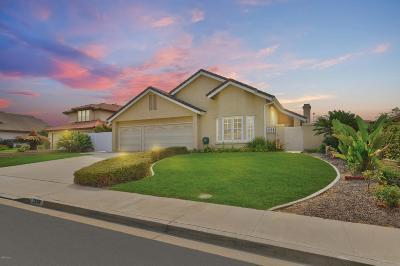 Camarillo Single Family Home For Sale: 2876 Corte Caballos