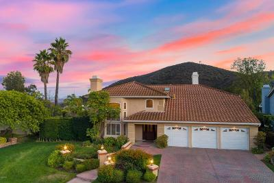 Oak Park Single Family Home For Sale: 5042 Pathfinder Avenue