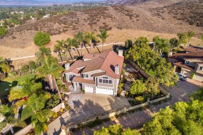 Simi Valley Single Family Home For Sale: 267 Goldenwood Circle