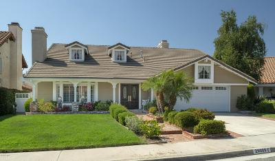 Agoura Hills Single Family Home For Sale: 29009 Tackaberry Court