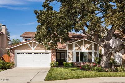 Agoura Hills Single Family Home For Sale: 30105 Amelia Drive