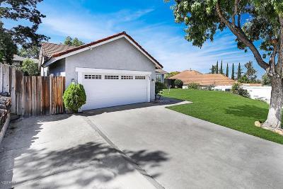 Newbury Park Single Family Home For Sale: 295 Mesa Avenue