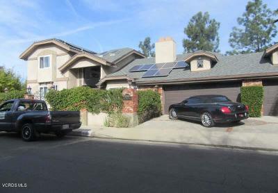 Studio City Single Family Home For Sale: 11559 Dona Teresa Drive