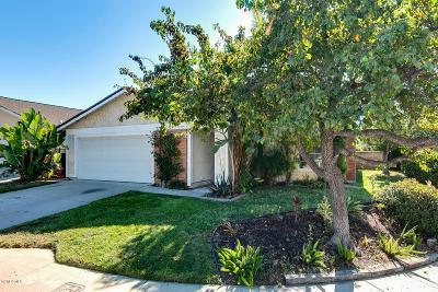 Newbury Park Single Family Home For Sale: 468 Blackhawk Drive