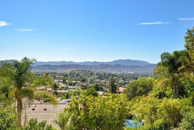 Thousand Oaks Single Family Home For Sale: 2684 Sapra Street