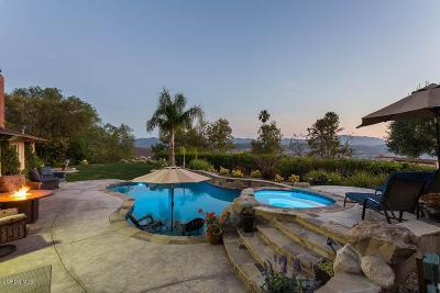Thousand Oaks Single Family Home For Sale: 2672 Sapra Street