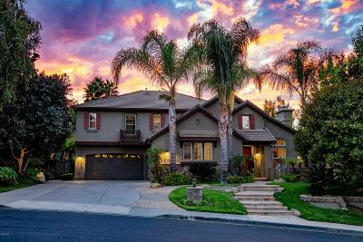 Simi Valley Single Family Home For Sale: 52 West Twisted Oak Drive
