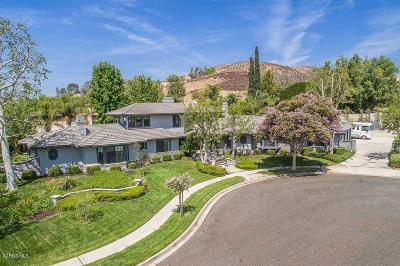 Simi Valley Single Family Home For Sale: 3287 Wisdom Court