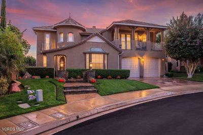 Simi Valley Single Family Home For Sale: 204 Spruce Circle