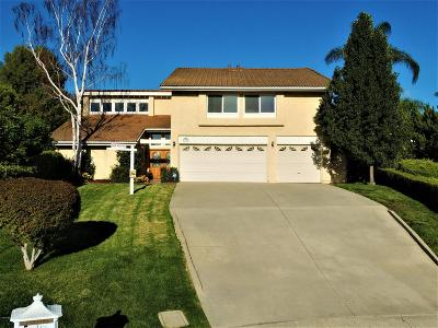 Westlake Village Single Family Home For Sale: 3229 Sawtooth Court