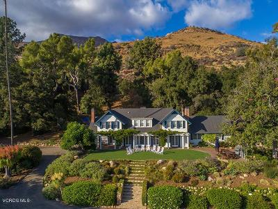 Ojai Single Family Home For Sale: 1563 Gridley Road