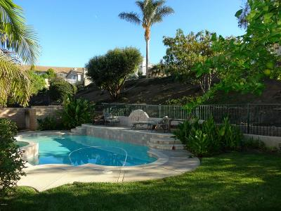 Simi Valley Single Family Home For Sale: 3452 Green Pine Place