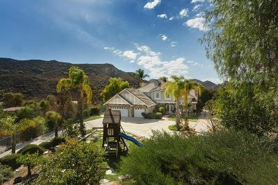Agoura Hills Single Family Home For Sale: 29869 Vista Del Arroyo
