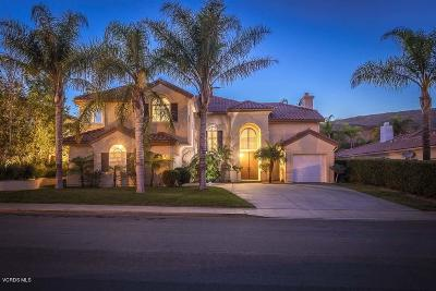 Simi Valley Single Family Home For Sale: 3269 Little Feather Avenue