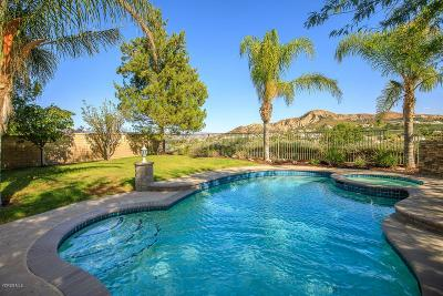 Canyon Country Single Family Home For Sale: 26432 Oakdale Canyon Lane