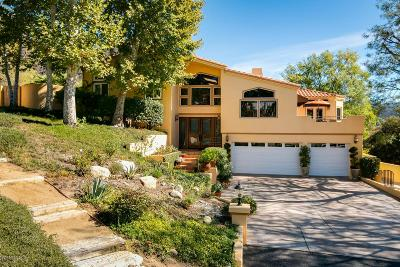 Agoura Hills Single Family Home For Sale: 29659 Mulholland Highway