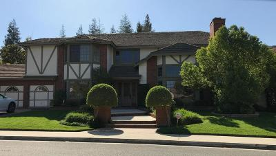Agoura Hills Single Family Home For Sale: 29528 Ridgeway Drive