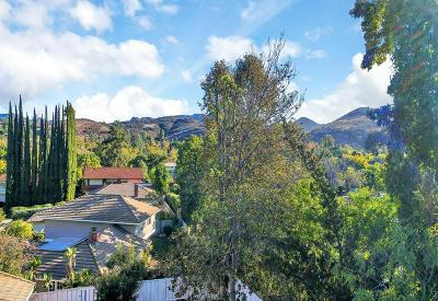 Westlake Village Single Family Home For Sale: 1659 Bucksglen Court
