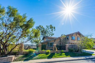 Anaheim Single Family Home For Sale: 6598 East Paseo Caballo