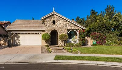 Camarillo Single Family Home For Sale: 3887 Hedge Lane