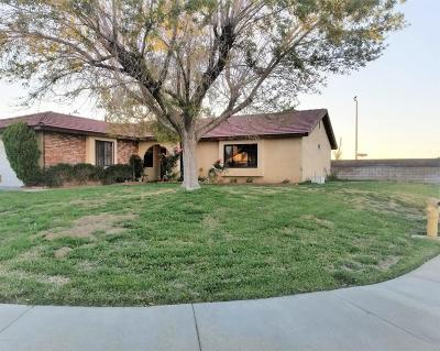Lancaster Single Family Home For Sale: 44941 Laszlo Street