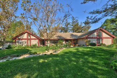 Camarillo Single Family Home For Sale: 6785 San Onofre Drive