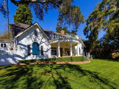 Santa Paula Single Family Home For Sale: 14 McKevett Heights