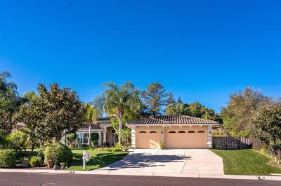 Camarillo Single Family Home For Sale: 1797 Cervato Drive