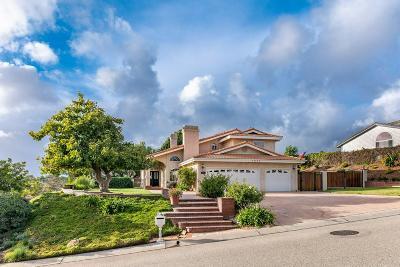 Camarillo Single Family Home For Sale: 7029 Quito Court