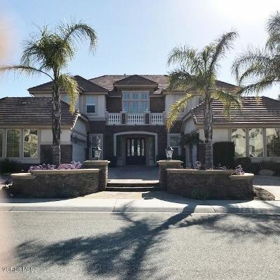 Moorpark Single Family Home For Sale: 7367 Zaharias Court
