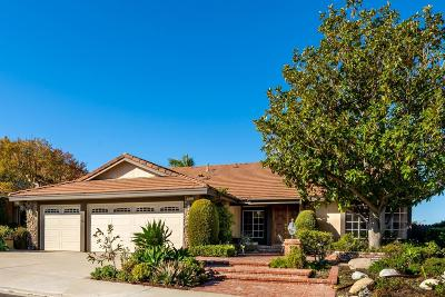 Thousand Oaks Single Family Home For Sale: 3251 Montagne Way
