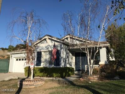 Simi Valley Single Family Home For Sale: 3490 Pine View Drive
