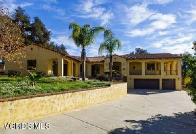 Ojai Single Family Home For Sale: 565 Pala Drive