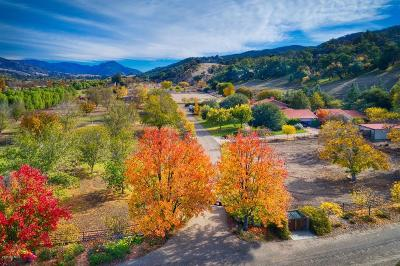 Ojai Single Family Home For Sale: 12150 Mountain Lion Road