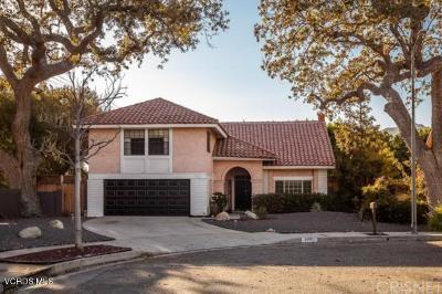Chatsworth Single Family Home For Sale: 9901 Hanna Avenue