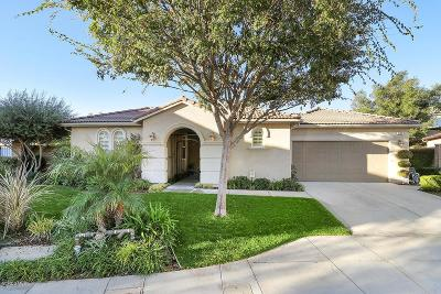 Newbury Park Single Family Home For Sale: 1569 Silver Shadow Drive
