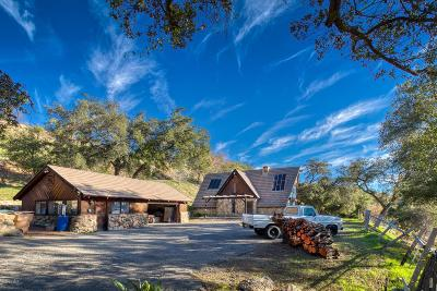 Santa Paula Single Family Home For Sale: 13001 Koenigstein Road