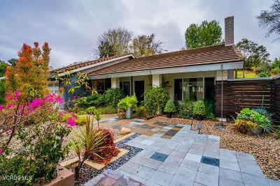 Thousand Oaks Single Family Home For Sale: 1600 Marian Avenue
