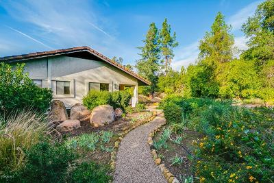 Ojai Single Family Home For Sale: 539 Del Oro Drive