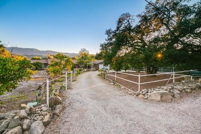 Ojai Single Family Home For Sale: 3558 Thacher Road