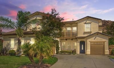 Newbury Park Single Family Home For Sale: 5143 Via El Molino