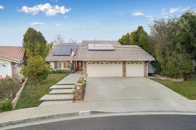Agoura Hills Single Family Home For Sale: 6303 Aquarius Avenue