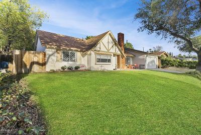 Thousand Oaks Single Family Home For Sale: 1363 East Avenida De Los Arboles