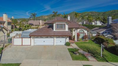Simi Valley Single Family Home For Sale: 6063 Buffalo Street