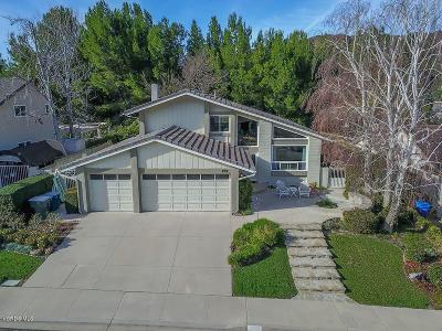 Thousand Oaks Single Family Home For Sale: 419 Thunderhead Street
