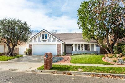 Oak Park Single Family Home Active Under Contract: 217 Park View Drive