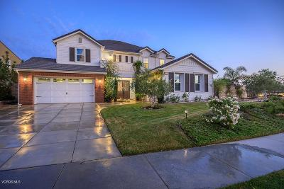 Moorpark Single Family Home For Sale: 13638 Bottens Court