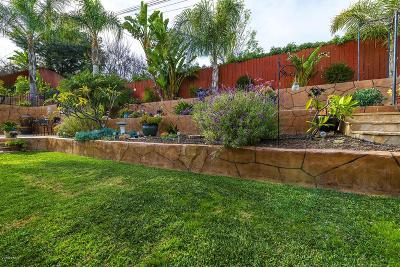 Thousand Oaks Single Family Home For Sale: 3215 Carlton Drive